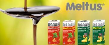 meltus_top7